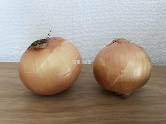 玉ねぎ2個