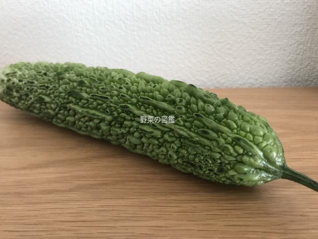 ゴーヤ(苦瓜)