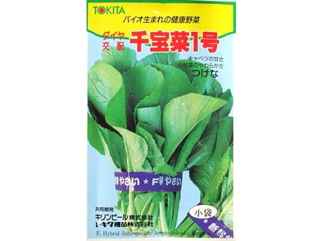 「千宝菜1号」種のパッケージ(TOKITA)