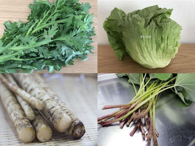 キク科の野菜(春菊・レタス・ごぼう・ふき)