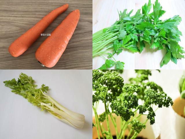 セリ科の野菜(人参・ミツバ・セロリ・パセリ)