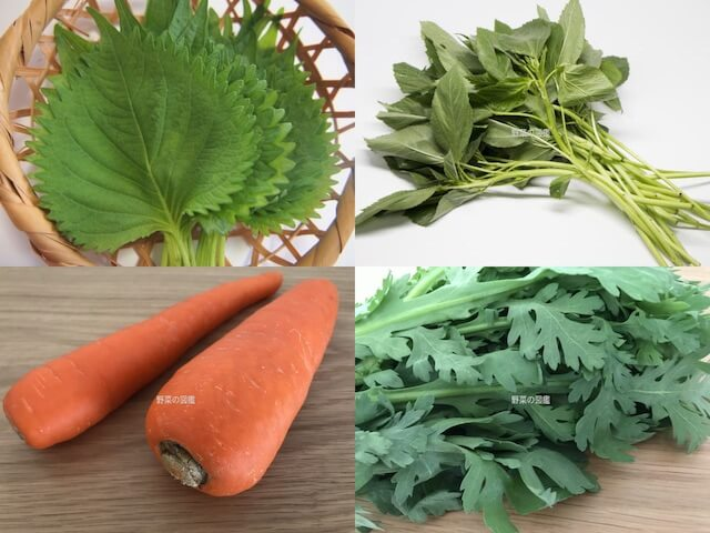 β-カロテン(ビタミンA)の含有量が多い野菜(しそ、モロヘイヤ、人参、春菊)