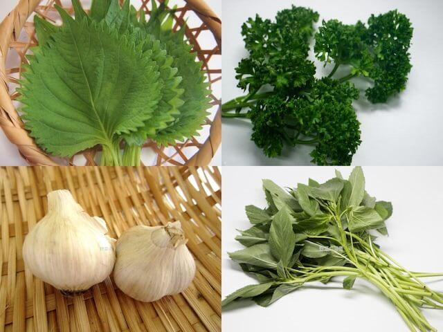 食物繊維の含有量が多い野菜(しそ、パセリ、にんにく、モロヘイヤ)