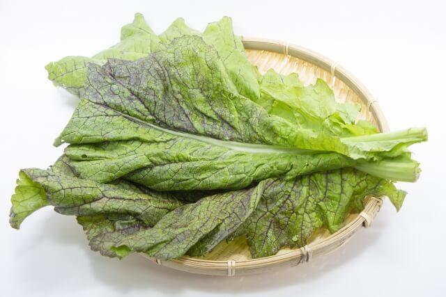高菜(たかな)