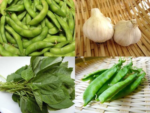 ビタミンB1の含有量が多い野菜(枝豆、にんにく、モロヘイヤ、さやえんどう)