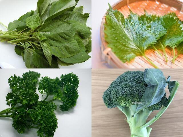 ビタミンB2の含有量が多い野菜(モロヘイヤ、しそ、パセリ、ブロッコリー)