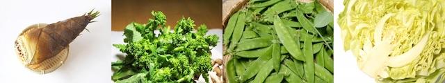 春が旬の野菜(たけのこ・菜の花・さやえんどう・春キャベツ)