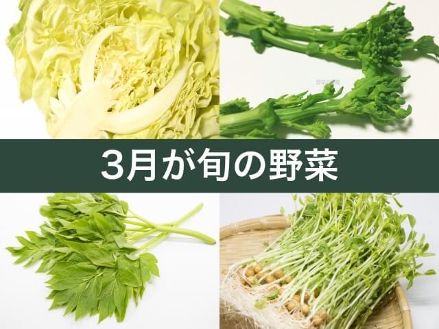 3月が旬の野菜(春キャベツ、菜の花、明日葉、豆苗)