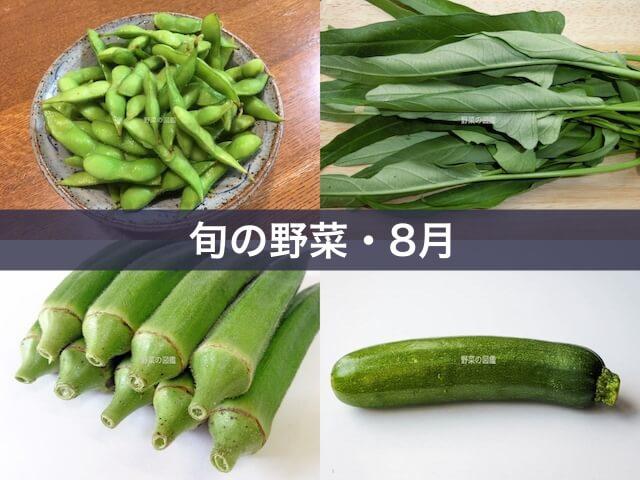 旬の野菜・8月(枝豆・空心菜・オクラ・ズッキーニ)